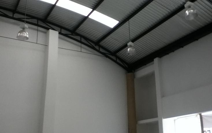 Foto de nave industrial en renta en  , ocosingo centro, ocosingo, chiapas, 1310061 No. 12