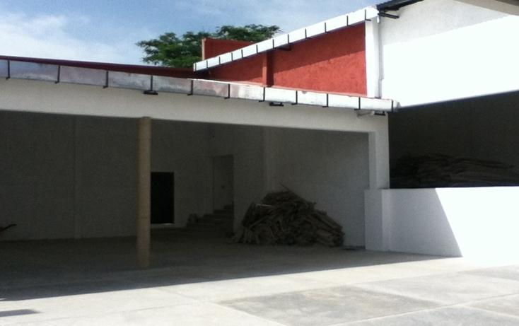 Foto de nave industrial en renta en  , ocosingo centro, ocosingo, chiapas, 1310061 No. 21