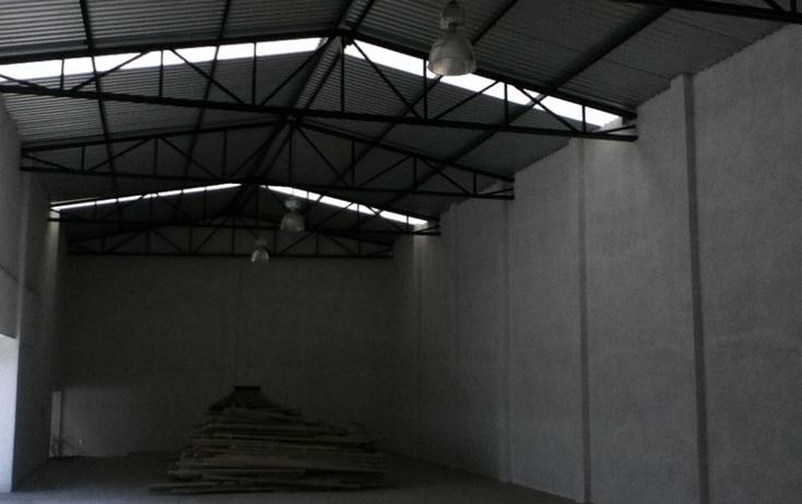 Foto de nave industrial en renta en  , ocosingo centro, ocosingo, chiapas, 1310061 No. 25