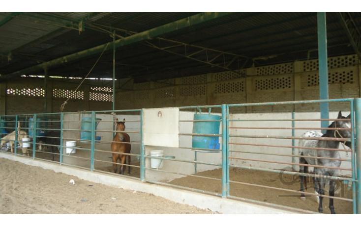 Foto de terreno habitacional en venta en  , ocotlán centro, ocotlán, jalisco, 1908245 No. 05