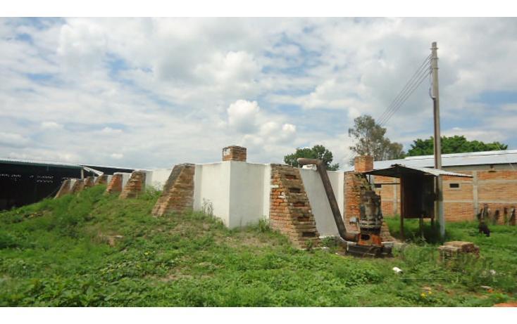 Foto de terreno habitacional en venta en  , ocotlán centro, ocotlán, jalisco, 1908245 No. 10
