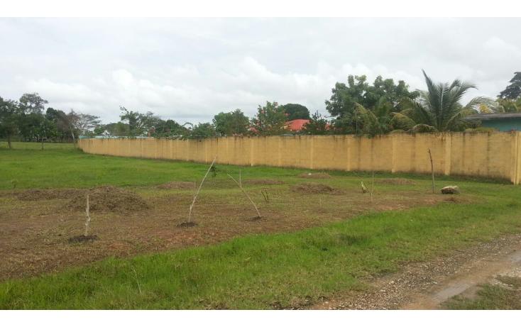 Foto de terreno habitacional en venta en  , ocuiltzapotlan, centro, tabasco, 1041511 No. 02