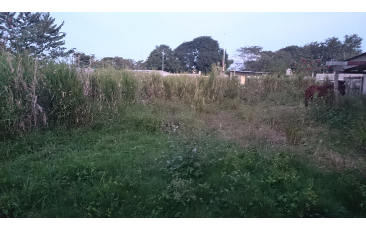 Foto de terreno comercial en venta en  , ocuiltzapotlan, centro, tabasco, 1289099 No. 03