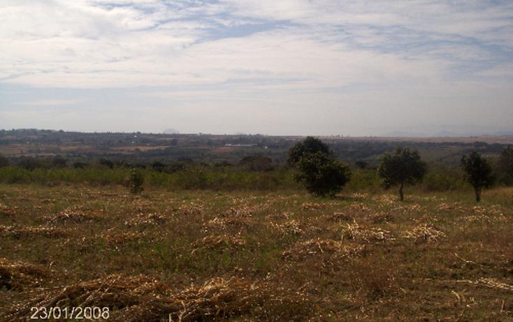 Foto de terreno comercial en venta en  , ocuituco, ocuituco, morelos, 1080351 No. 03