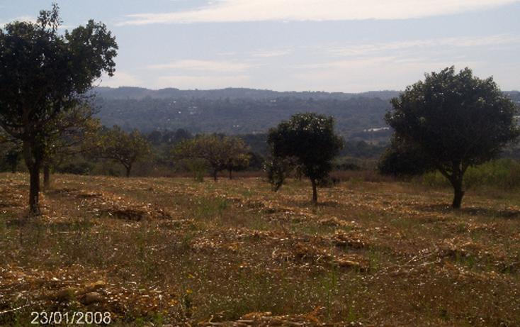Foto de terreno comercial en venta en  , ocuituco, ocuituco, morelos, 1080351 No. 04