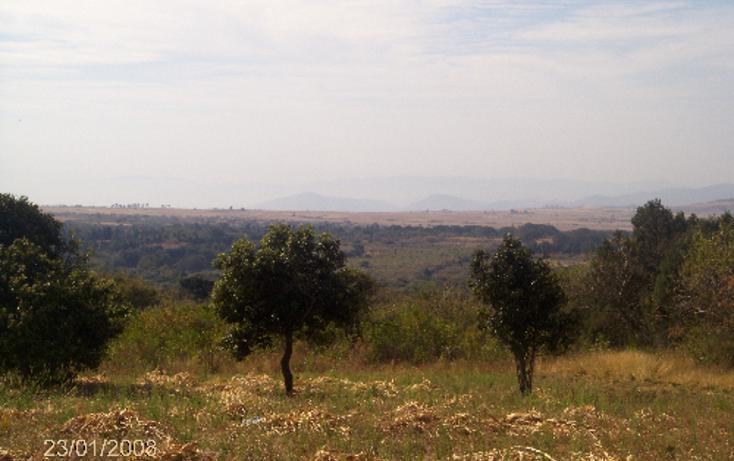 Foto de terreno comercial en venta en  , ocuituco, ocuituco, morelos, 1080351 No. 05