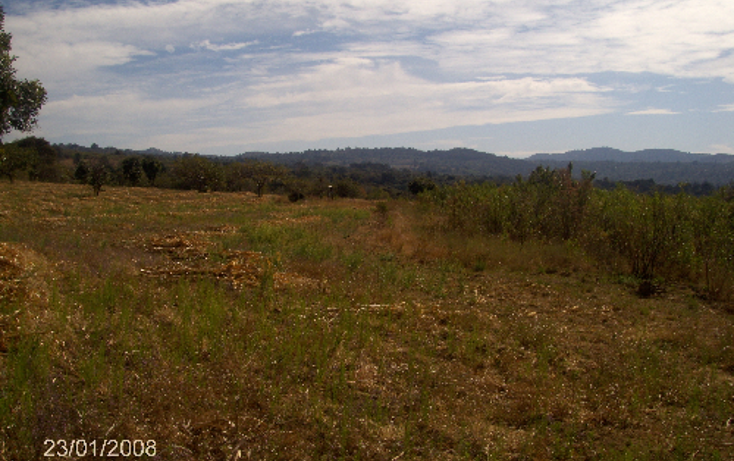 Foto de terreno comercial en venta en  , ocuituco, ocuituco, morelos, 1080351 No. 06