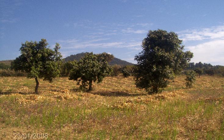 Foto de terreno comercial en venta en  , ocuituco, ocuituco, morelos, 1080351 No. 07