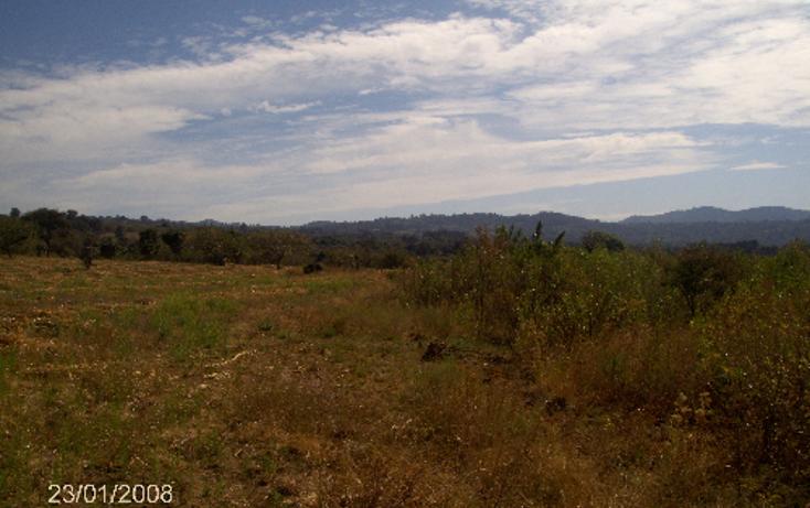 Foto de terreno comercial en venta en  , ocuituco, ocuituco, morelos, 1080351 No. 08