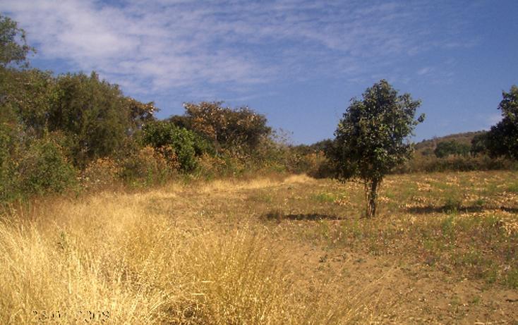 Foto de terreno comercial en venta en  , ocuituco, ocuituco, morelos, 1080351 No. 09