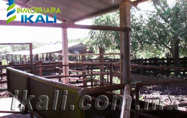 Foto de terreno habitacional en venta en ojite, ojite, tuxpan, veracruz, 786433 no 09