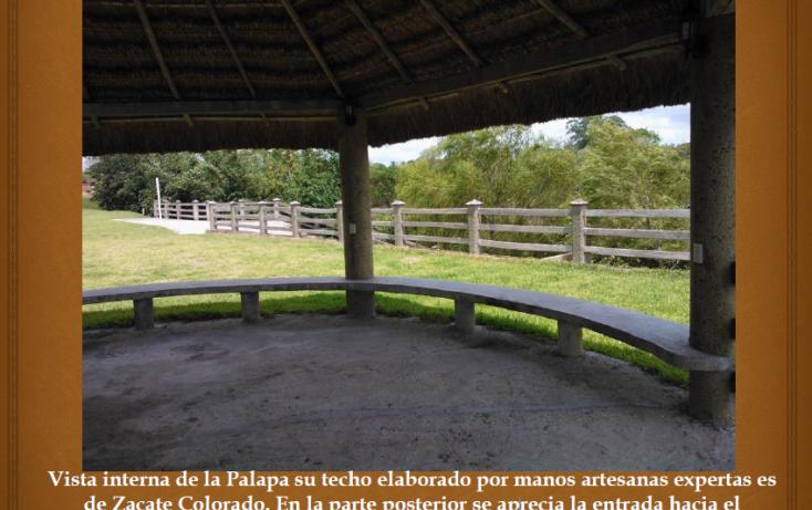 Foto de terreno habitacional en venta en, ojite, tuxpan, veracruz, 1097001 no 04