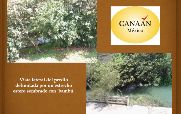 Foto de terreno habitacional en venta en, ojite, tuxpan, veracruz, 1097001 no 06