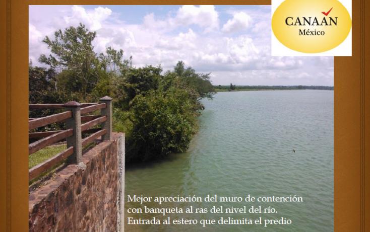 Foto de terreno habitacional en venta en, ojite, tuxpan, veracruz, 1097001 no 07