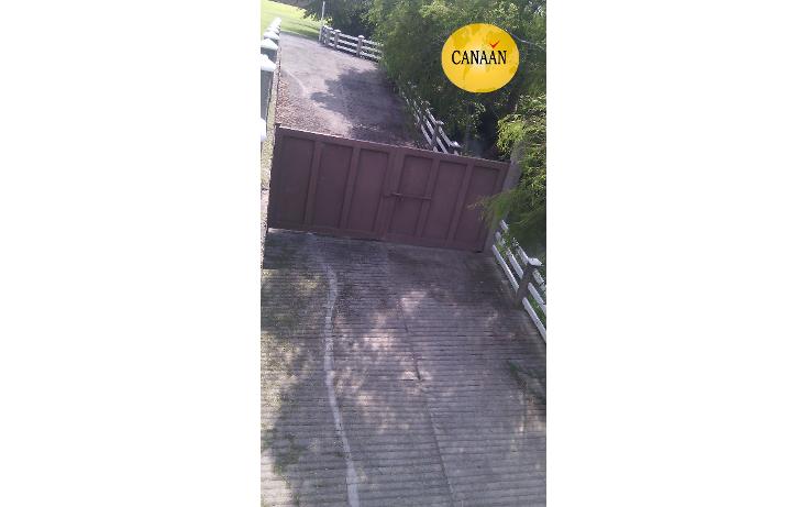 Foto de terreno habitacional en venta en  , ojite, tuxpan, veracruz de ignacio de la llave, 1097001 No. 12