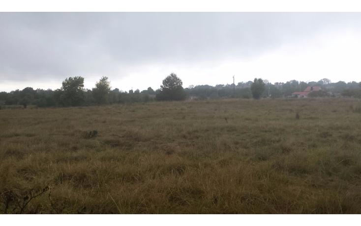 Foto de terreno habitacional en venta en  , ojo de agua, huasca de ocampo, hidalgo, 1233327 No. 01