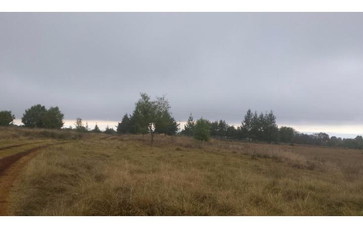 Foto de terreno habitacional en venta en  , ojo de agua, huasca de ocampo, hidalgo, 1233327 No. 07