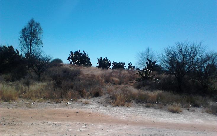 Foto de terreno comercial en venta en  , ojo zarco, pabellón de arteaga, aguascalientes, 1042319 No. 01