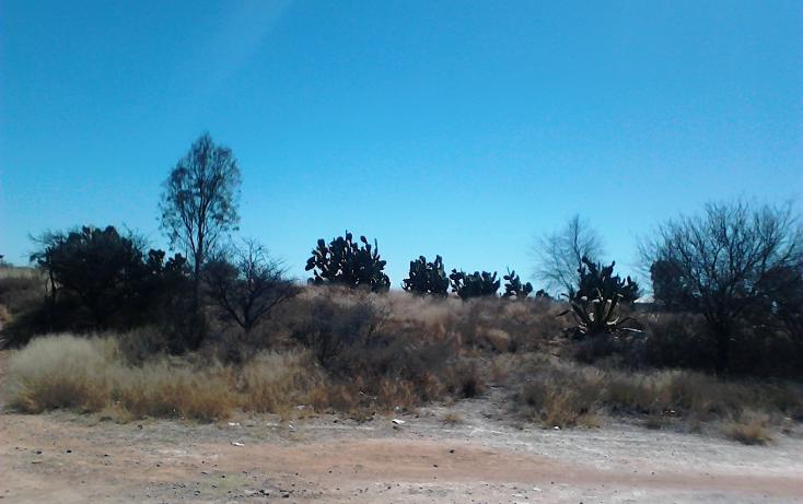 Foto de terreno comercial en venta en  , ojo zarco, pabellón de arteaga, aguascalientes, 1042319 No. 02