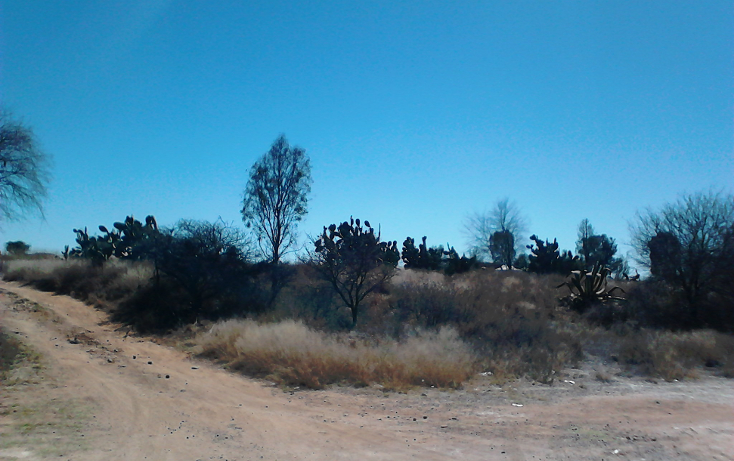 Foto de terreno comercial en venta en  , ojo zarco, pabellón de arteaga, aguascalientes, 1042319 No. 03