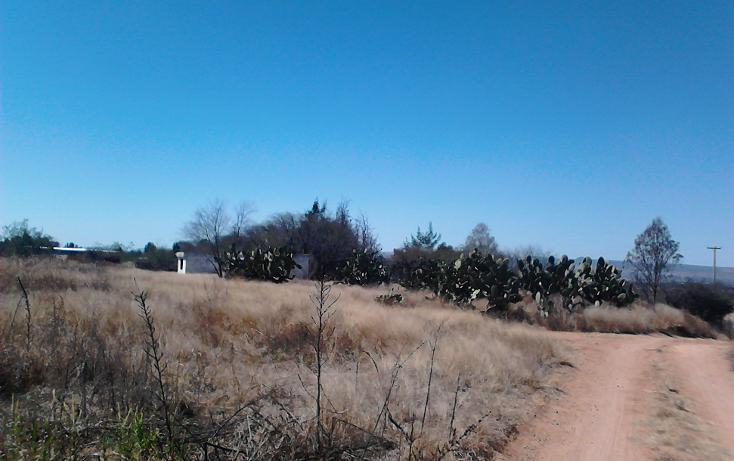 Foto de terreno comercial en venta en  , ojo zarco, pabellón de arteaga, aguascalientes, 1042319 No. 04