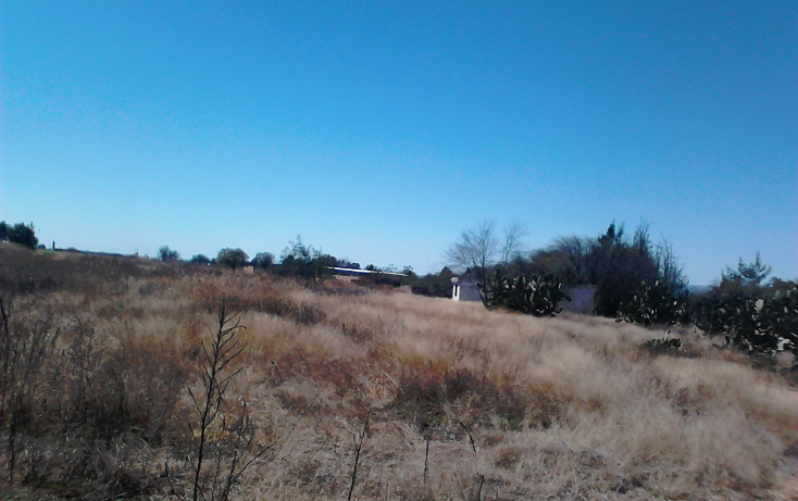 Foto de terreno comercial en venta en  , ojo zarco, pabellón de arteaga, aguascalientes, 1042319 No. 05