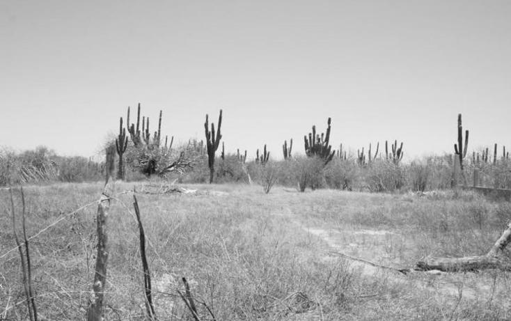 Foto de terreno habitacional en venta en  , olas altas, la paz, baja california sur, 1513518 No. 05