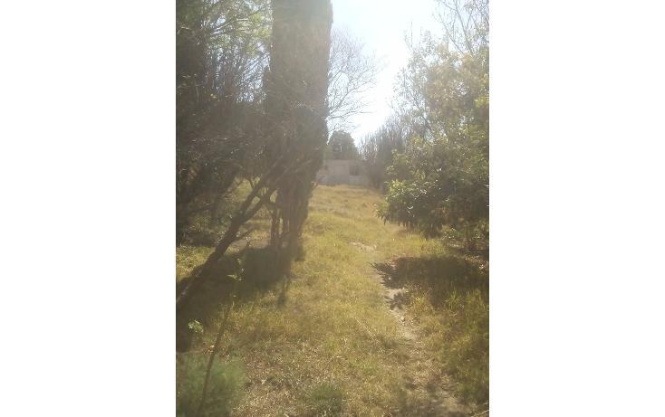 Foto de terreno habitacional en venta en  , san francisco ocotelulco, totolac, tlaxcala, 1732676 No. 02
