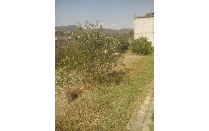 Foto de terreno habitacional en venta en  , san francisco ocotelulco, totolac, tlaxcala, 1732676 No. 06