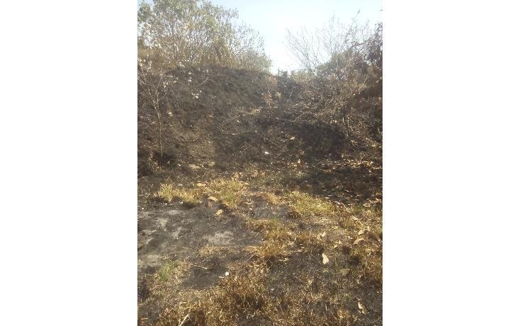 Foto de terreno habitacional en venta en olimpia 10, san francisco ocotelulco, totolac, tlaxcala, 1732676 no 10