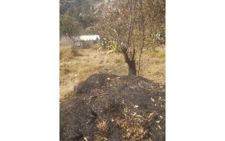 Foto de terreno habitacional en venta en  , san francisco ocotelulco, totolac, tlaxcala, 1732676 No. 11