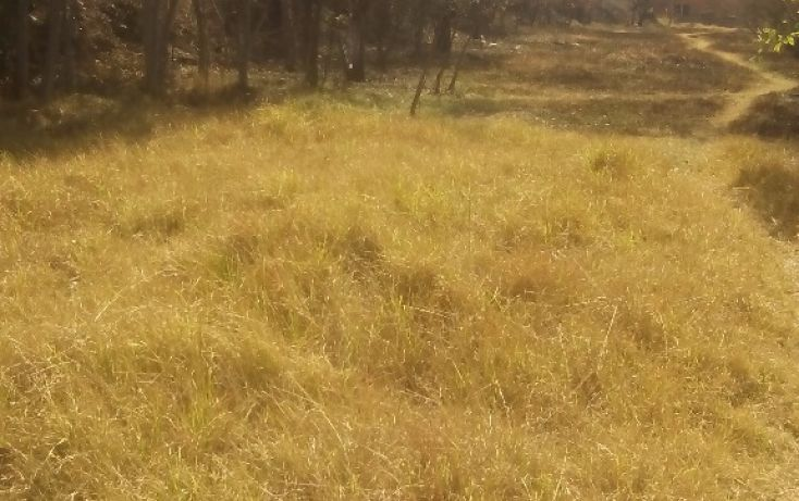 Foto de terreno habitacional en venta en olimpia 10, san francisco ocotelulco, totolac, tlaxcala, 1732676 no 23