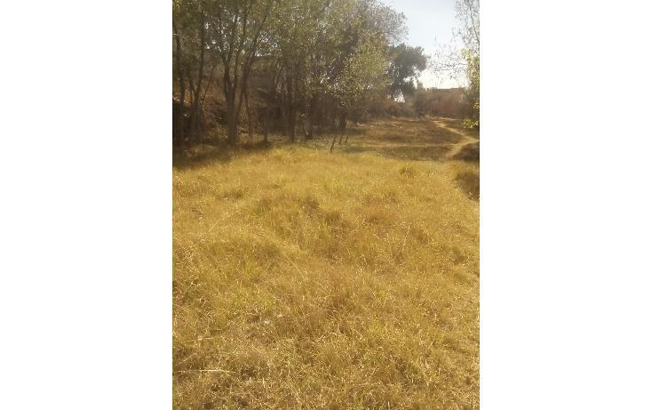 Foto de terreno habitacional en venta en  , san francisco ocotelulco, totolac, tlaxcala, 1732676 No. 23