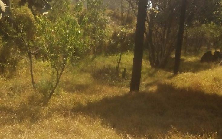 Foto de terreno habitacional en venta en olimpia 10, san francisco ocotelulco, totolac, tlaxcala, 1732676 no 24