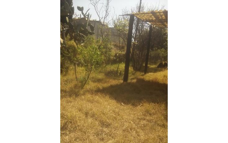 Foto de terreno habitacional en venta en  , san francisco ocotelulco, totolac, tlaxcala, 1732676 No. 24