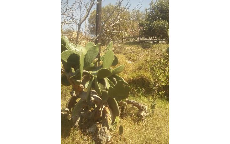 Foto de terreno habitacional en venta en olimpia 10, san francisco ocotelulco, totolac, tlaxcala, 1732676 no 27
