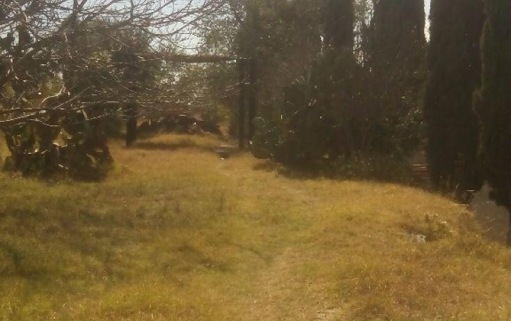 Foto de terreno habitacional en venta en olimpia 10, san francisco ocotelulco, totolac, tlaxcala, 1732676 no 28