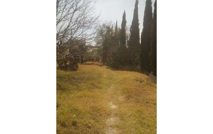 Foto de terreno habitacional en venta en  , san francisco ocotelulco, totolac, tlaxcala, 1732676 No. 28