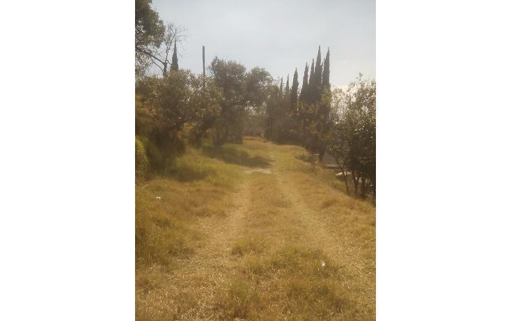 Foto de terreno habitacional en venta en  , san francisco ocotelulco, totolac, tlaxcala, 1732676 No. 30