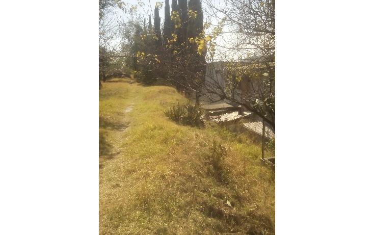 Foto de terreno habitacional en venta en  , san francisco ocotelulco, totolac, tlaxcala, 1732676 No. 31