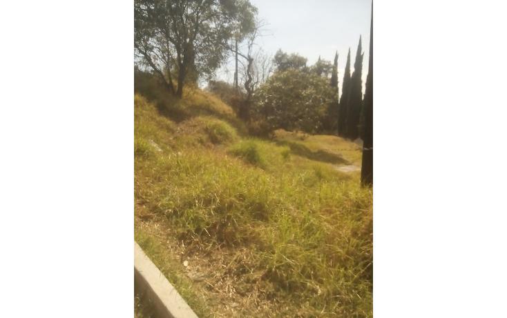 Foto de terreno habitacional en venta en olimpia 10 , san francisco ocotelulco, totolac, tlaxcala, 1732676 No. 32