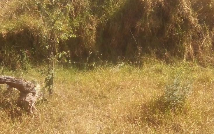 Foto de terreno habitacional en venta en olimpia 10, san francisco ocotelulco, totolac, tlaxcala, 1732676 no 36