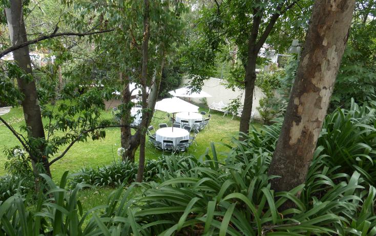 Foto de departamento en venta en  , olivar de los padres, álvaro obregón, distrito federal, 1830440 No. 06