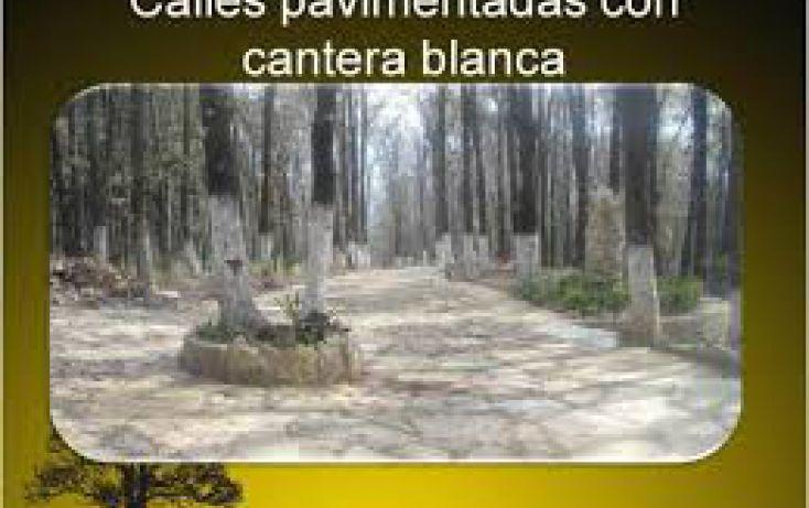 Foto de terreno habitacional en venta en, omitlán de juárez centro, omitlán de juárez, hidalgo, 1186535 no 02