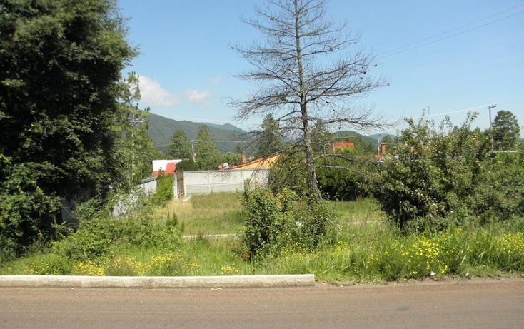Foto de terreno habitacional en venta en  , omitlán de juárez centro, omitlán de juárez, hidalgo, 2732211 No. 03