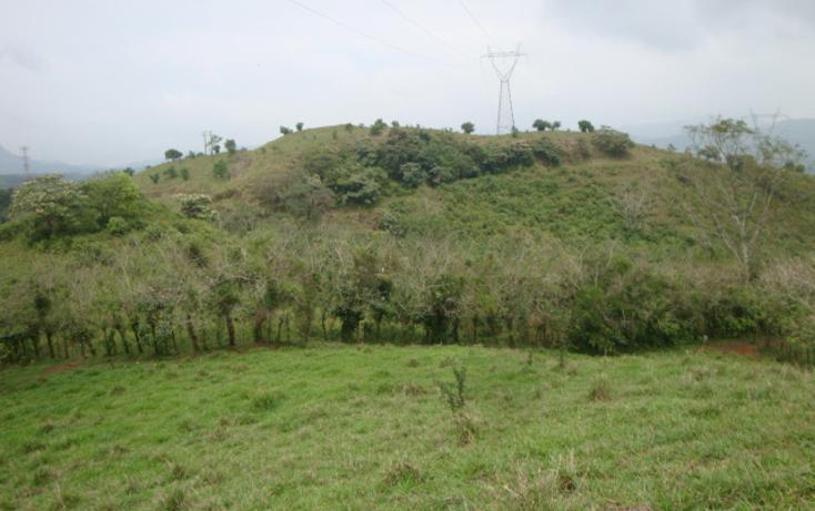 Foto de rancho en venta en  , ostuacan, ostuacán, chiapas, 816293 No. 03