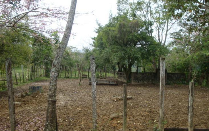 Foto de rancho en venta en  , ostuacan, ostuacán, chiapas, 816293 No. 05