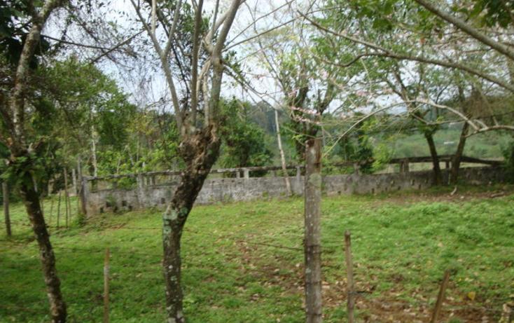 Foto de rancho en venta en  , ostuacan, ostuacán, chiapas, 816293 No. 06