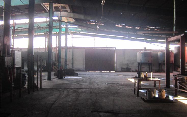 Foto de nave industrial en renta en  , otay insurgentes, tijuana, baja california, 1174391 No. 03