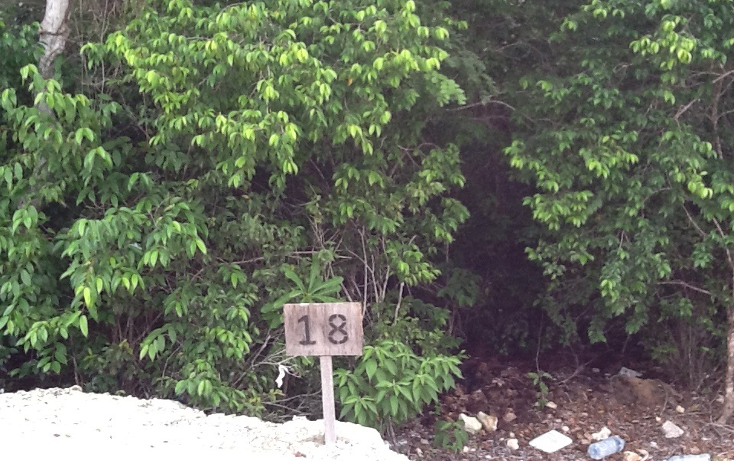 Foto de terreno habitacional en venta en  , paamul, solidaridad, quintana roo, 2015656 No. 02